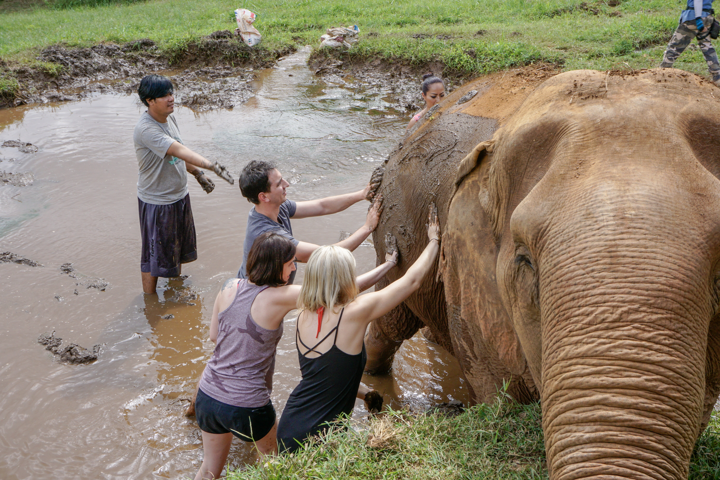 Elephant Nature Park-9779