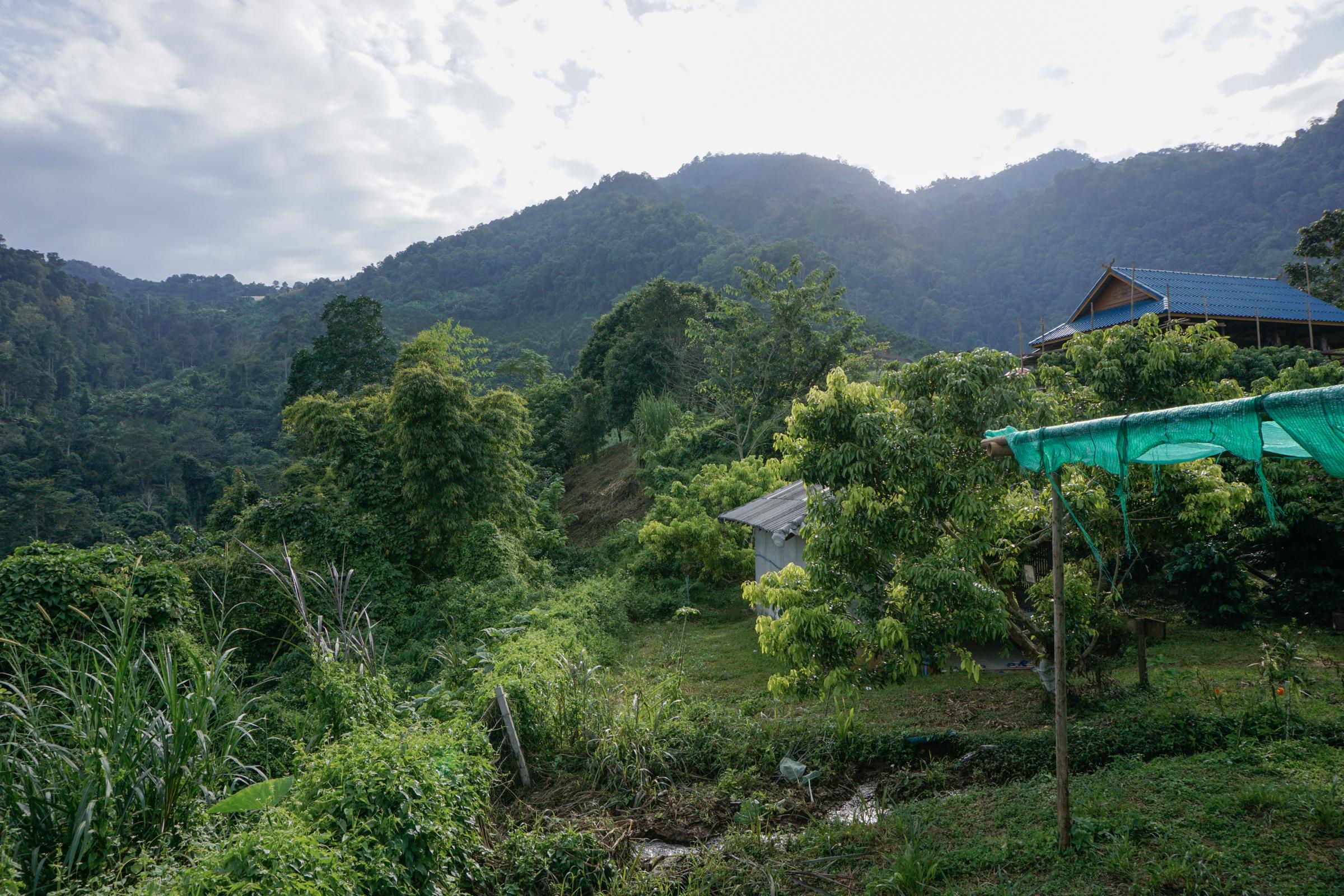 Elephant Nature Park-9846